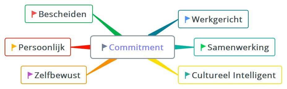 zeven vaardigheden inclusief leiderschap